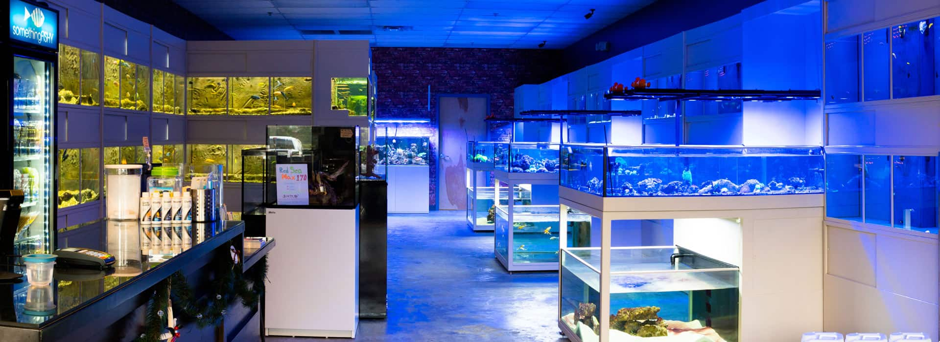 aquarium fish store highly rated tropical fish store
